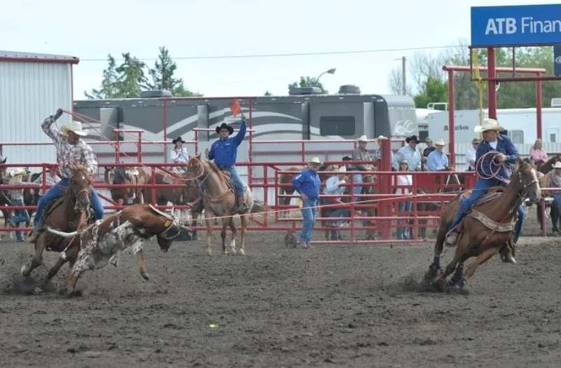 Por exemplo, no famoso e tradicional Calgary Stampede, rodeio centenário, nunca houve uma competição de Team Roping até hoje na programação