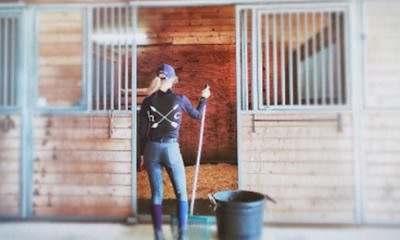 Você que está ai no seu CT ou rancho e precisa tomar coragem para dar limpar baias, veja como deixar esse momento mais divertido