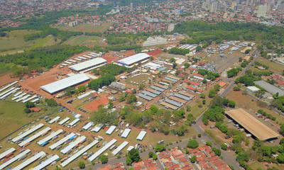 Começou o 30° Congresso Brasileiro de Quarto de Milha