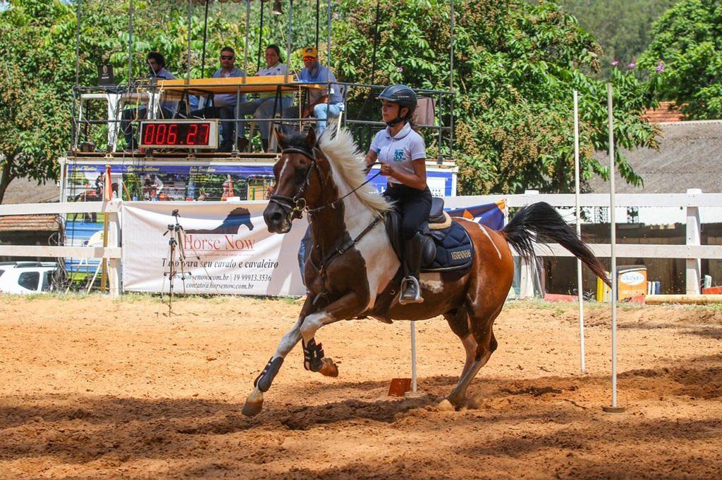 Cavalo Árabe mostra toda a sua funcionalidade na II Etapa de Salto e Hipismo Rural da ABHIR