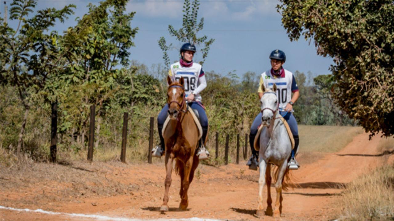 Enduro Equestre: 50 conjuntos participam da a prova CEI 3* 140km de Enduro Equestre no Haras Minas Gerais Endurance