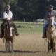 Entenda a necessidade de exercício para o cavalo novo