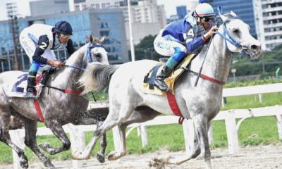 Trata-se de um dos Grandes Prêmios mais tradicionais do Cavalo Árabe, em 1.400 m na pista de grama, valendo uma bolsa de R$ 20 mil