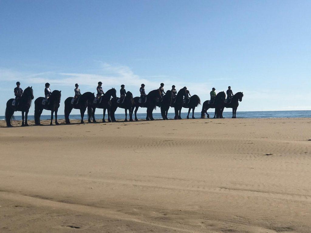 Paulo Junqueira, em sua coluna da semana, escreve sobre a junção da ioga e cavalgada e seus benefícios.
