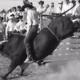 Paul Mayo revolucionou o Bareback Riding com a técnica Estilo Mayo