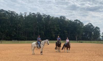 Cultura do Cavalo: Evento com mentoria de Aluisio Marins contou também com quase 2 mil pessoas ao vivo simultaneamente