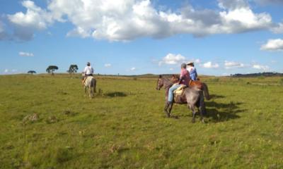 Turismo equestre exclusivo reúne benefícios que vão além de um atendimento único