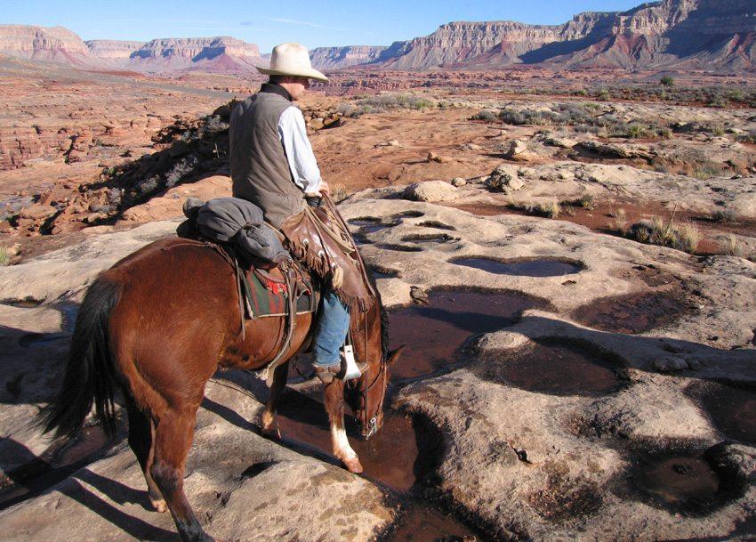 Grand Canyon a cavalo