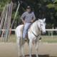 Transições limpas e precisas para o seu cavalo