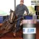 8º Leilão JBF Ranch & Haras Turato conta com uma seleção das melhores linhagens para Três Tambores