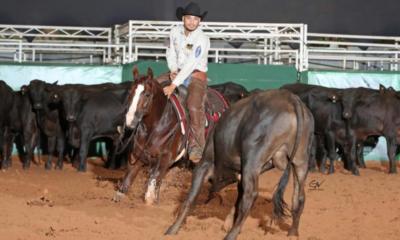 Araçatuba já tem os campeões de Apartação