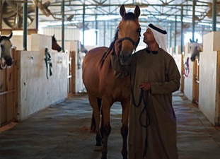 Al Jiyad é uma opção para quem quer fazer uma cavalgada no deserto em uma visita a Dubai