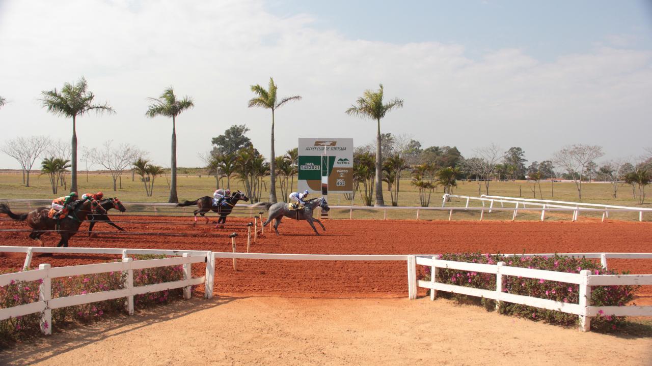 O último sábado foi de muita emoção no Jockey Club de Sorocaba, com mais uma conquista de Fantastic Fly Apollo.