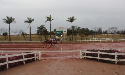 GP Taça de Prata e GP Brasil – II Tríplice Coroa agitam o final de semana no Jockey Club de Sorocaba