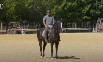 Por isso, a TV UC preparou um conteúdo que fala sobre como quebrar a rotina do cavalo