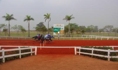 Classificatórias do GP Consagração – III Tríplice Coroa e GP Taça de Ouro movimentam Jockey Club de Sorocaba