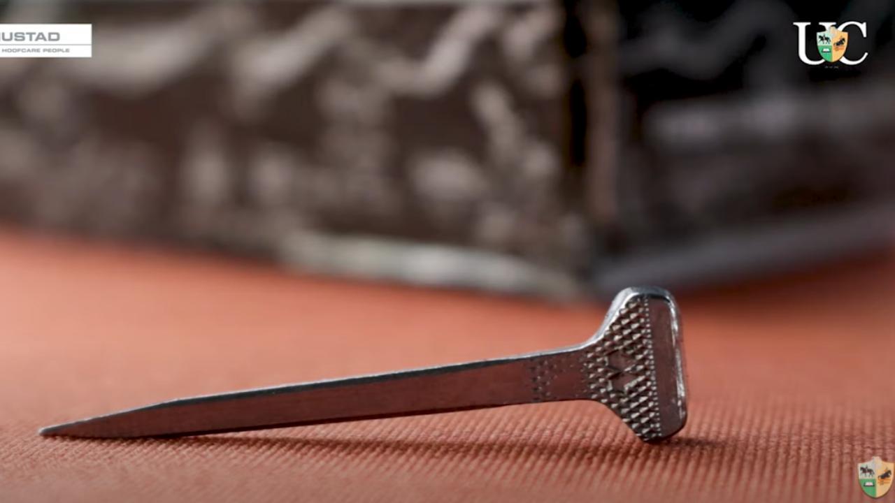 Cravo para ferraduras de alumínio