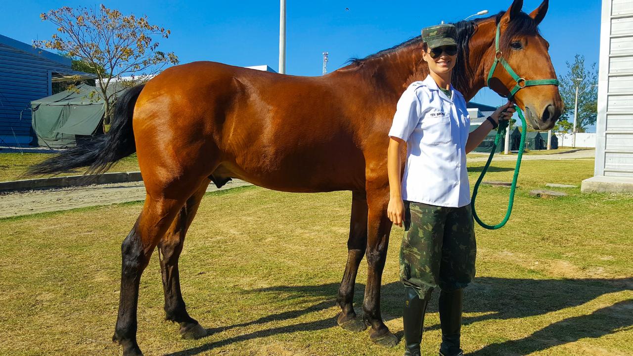 Equinos do Exército Brasileiro reforçam segurança nacional e fomentam modalidade de Hipismo no país