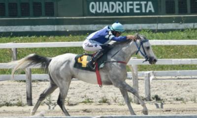 . Pelo Grande Prêmio da Associação Brasileira de Criadores do Cavalo Árabe (ABCCA) 11 animais estiveram em disputa, nos 1400 metros na pista de areia, concorrendo a uma bolsa de mais de R$ 15 mil em prêmios.