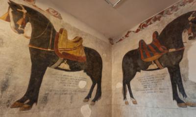 Indícios da origem do Cavalo Crioulo