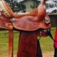 O meio do cavalo sob o aspecto social