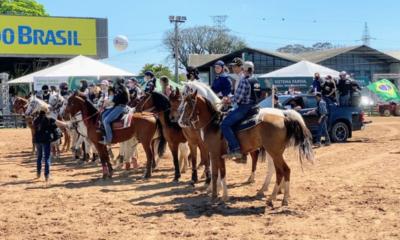 Participação do cavalo Árabe na Expointer 2021 proporciona bons negócios para a raça