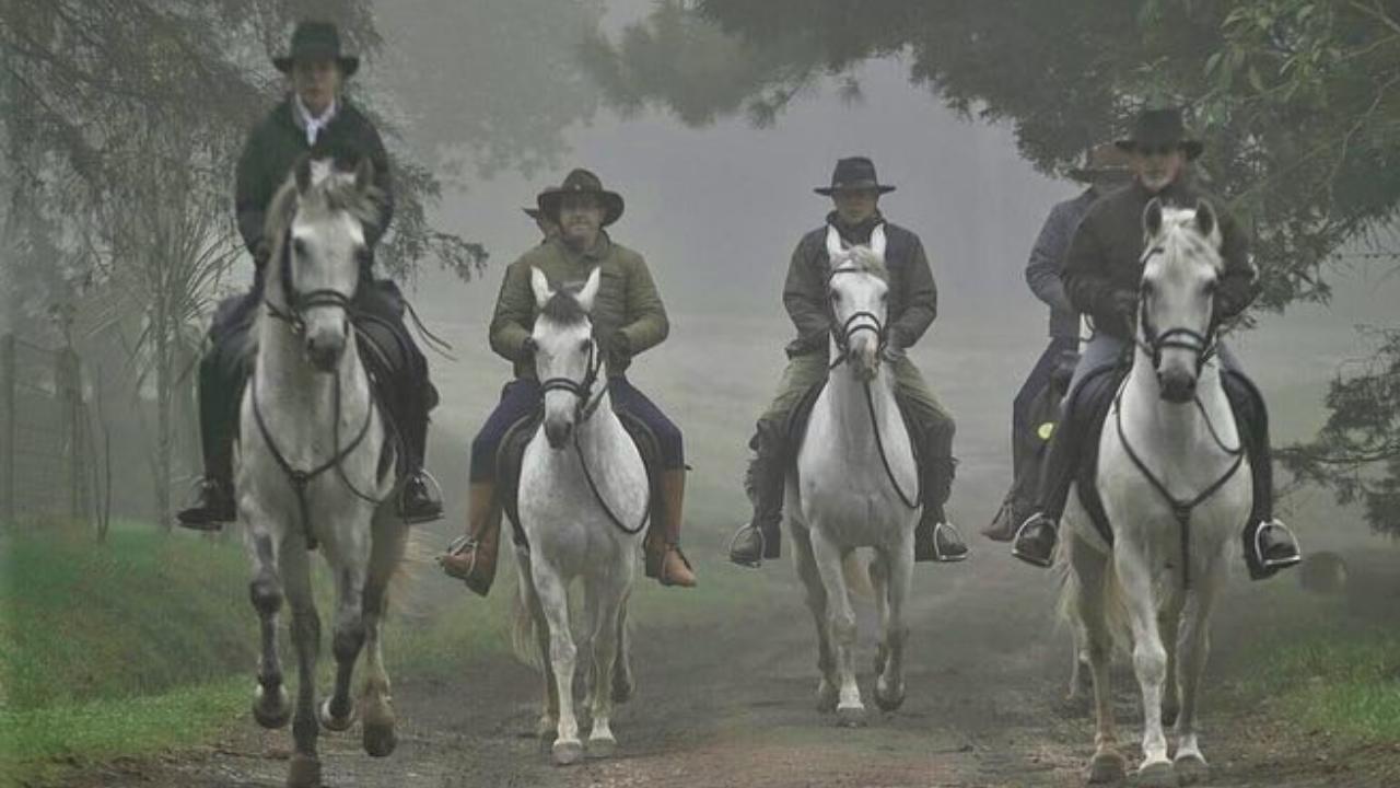 Rotas Históricas a Cavalo – Real Caminho do Viamão