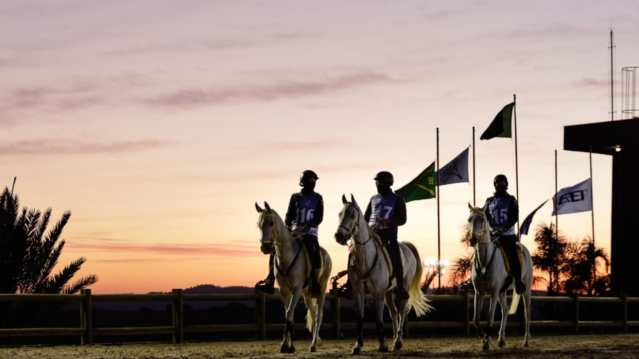 Copa Nacional de Enduro do Cavalo Árabe acontece nesta semana em Campinas