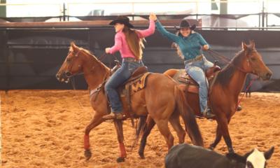 Destaques do Ranch Sorting e Team Penning do Quarto de Milha