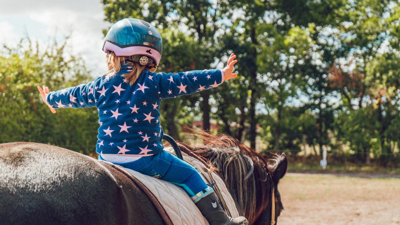 Especial Dia das Crianças: Paixão pelos cavalos