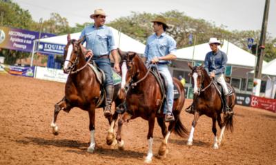 Nacional do Mangalarga começa nessa semana repleta de atrações