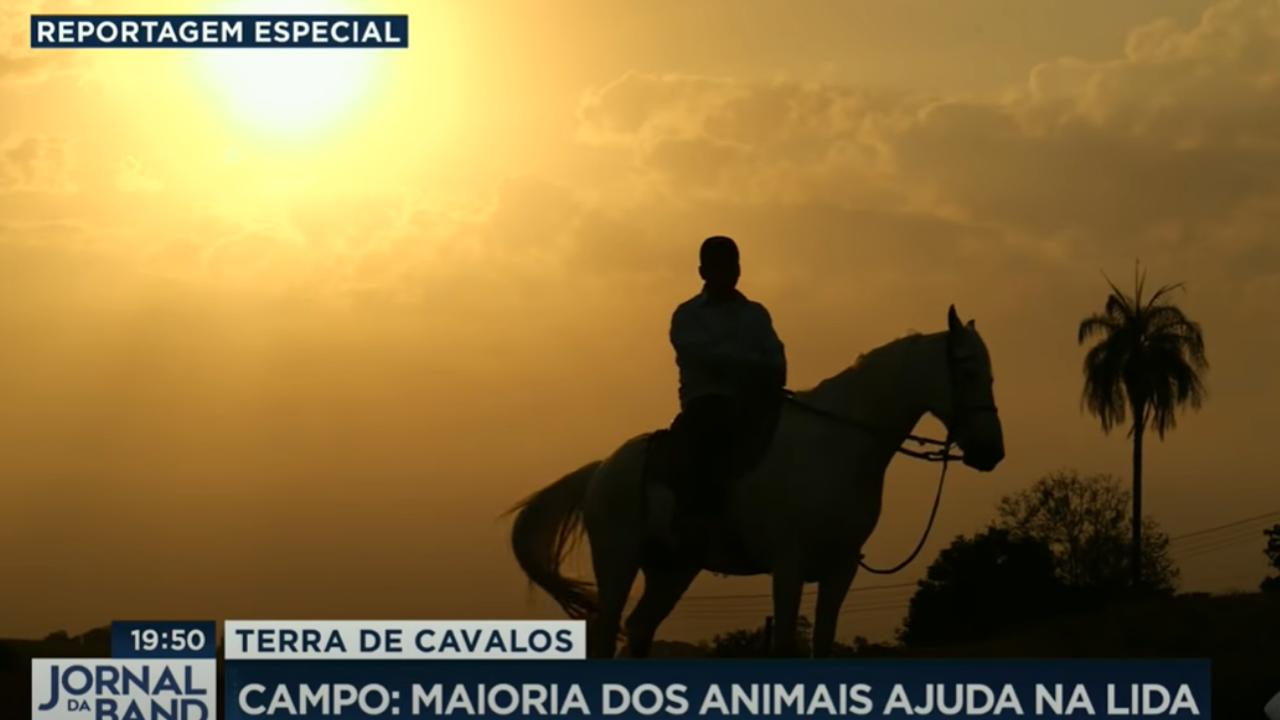 """""""Terra de Cavalos"""" destaca o universo equino no Brasil"""