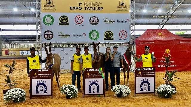 1ª Expo Especializada Marchador de Tatuí reúne 203 animais