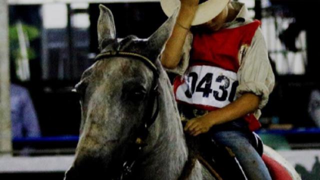 Confira dicas de equitação para cavaleiros mirins
