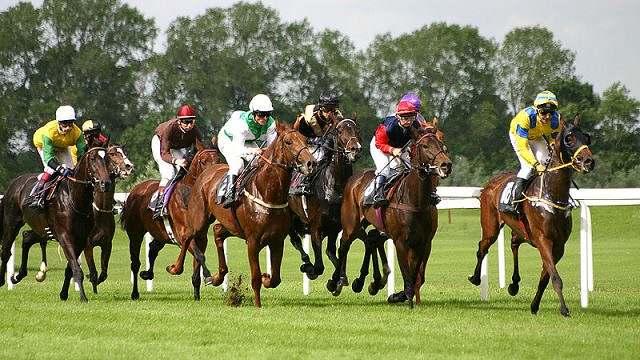 Corrida, ou Turfe, é um esporte popular de velocidade 01