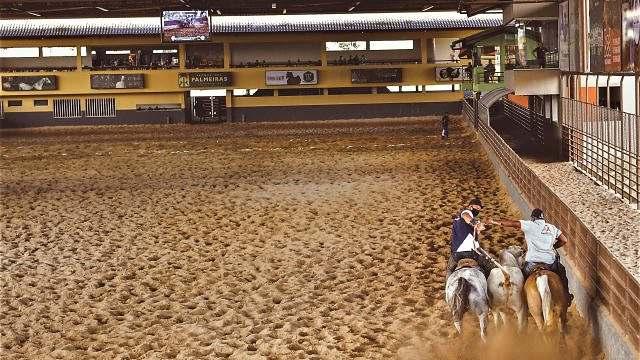 DSC_6468_bem-estar para os conjuntos na moderna arena coberta