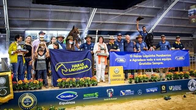 Haras Lagoinhas há 18 anos Melhor Criador e Expositor Mangalarga Pampa2