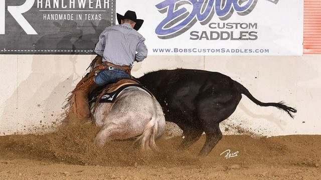 O Working Cow Horse une o trabalho de Rédeas com o de Apartação 01