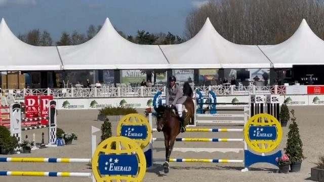 BHs do Haras Império Egípcio obtém bons resultados na Bélgica1