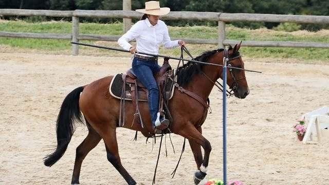 Disputas acirradas marcam 2ª etapa do campeonato de Equitação de Trabalho (1)
