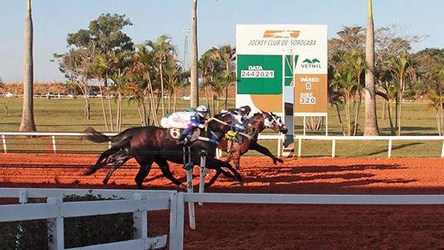 Party Hard vence GP Brazilian Futurity 2021 01