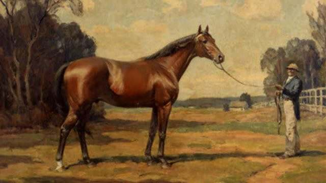 Um pouco da história do cavalo Quarto de Milha 01